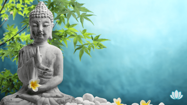 Stress reduzieren mit Meditation